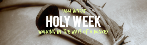1_palm sunday_walking in the ways of a donkey